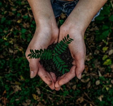 Donner au lieu de jeter et recycler vos objets en fin de vie